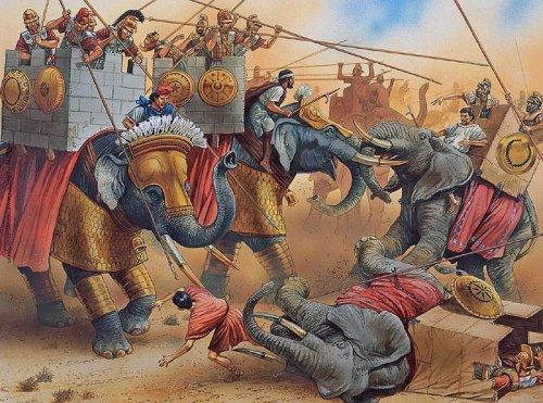 Essa ilustração de Peter Dennis mostra os elefantes asiáticos (de orelhas menores) de Antíoco III, contra os elefantes africanos de Ptolomeu IV na batalha de Ráfia em 217 a.C.