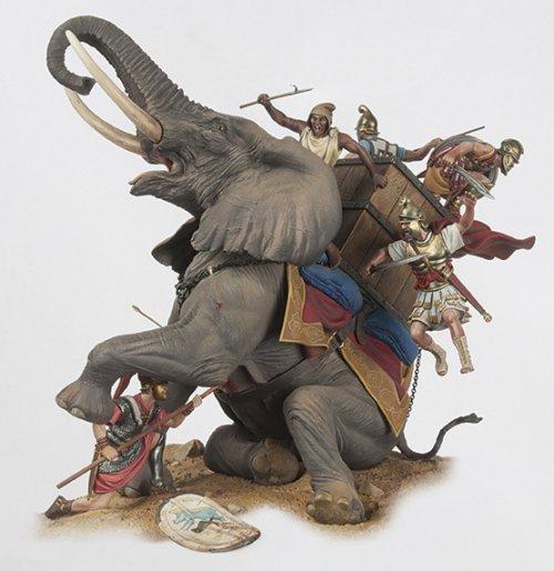 Mesmo sendo criaturas imensas, os elefantes se assustam facilmente e tem baixa resistência a dor. Tropas de infantaria bem treinadas não tinham muitas dificuldades em lidar com essa ameaça, por isso o elefante foi gradativamente perdendo espaço no campo de batalha. Essa é uma miniatura de Andrea Miniatures, de um elefante sendo abatido por um soldado romano em Zama.