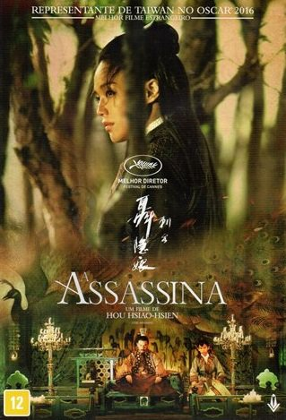 Capa do filme: A Assassina