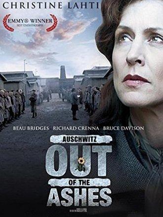 Capa do filme: Fora das cinzas